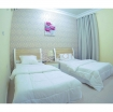 Brand New Fully Furnished 2- BHK Apartment Old Airport photo 4