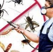 Best Pest Control Service in Qatar photo 1