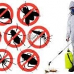 Pest control service in Doha Qatar photo 1