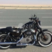 Harley Davidson XL 1200N Nightster Model 2008 photo 1