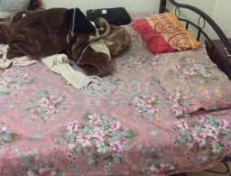 Big Bed with mattress- Firm and Strong for sale in Qatar