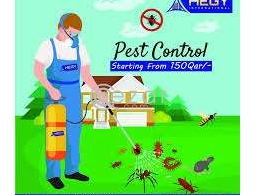 Pest control Doha Qatar 149QAR onwards in Qatar
