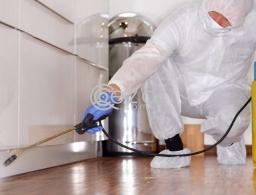 Cleaning With Fresho Qatar in Qatar