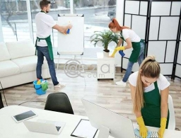 Skilled female and male cleaners staff available in Qatar