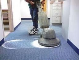 Carpet shampoo Free home service in Qatar