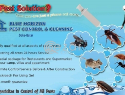 Pest Control and Cleaning Services in Qatar