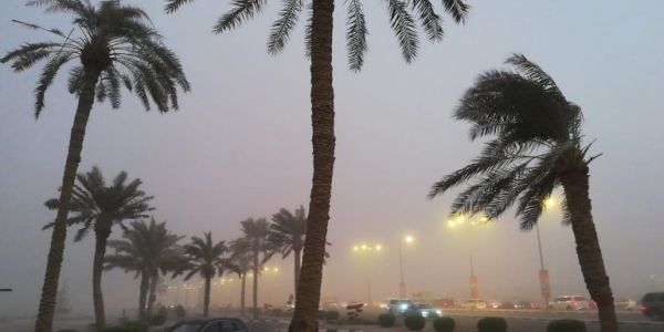 Low visibility due to strong dusty wind, motorists urged caution; heavy rain reaches north of Doha