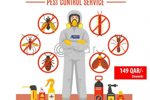 Pest Control Services From 149QAR/- photo 1